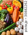 野菜 野菜集合 数種類の写真 30882262