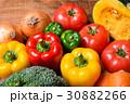 野菜 野菜集合 数種類の写真 30882266