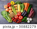 野菜 野菜集合 数種類の写真 30882279