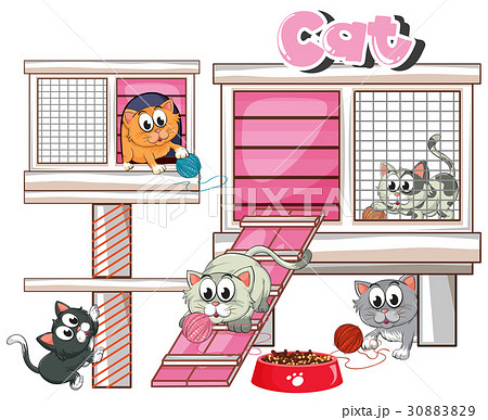 Many cats in cage 30883829