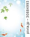金魚 バックグラウンド 和風のイラスト 30884993