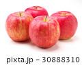 りんご 30888310