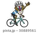 自転車に乗っているマントヒヒ 30889561