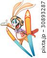 動物 ウサギ スキーのイラスト 30893287