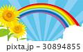 ひまわり サマーセール ポスター 30894855