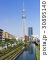 スカイツリー 青空 東京スカイツリーの写真 30895140