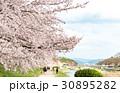 賀茂川の春 30895282