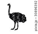Ostrich bird color silhouette animal 30896392