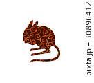 動物 ほ乳類 哺乳類のイラスト 30896412