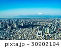 【東京都】都市風景 30902194