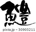 鱧 魚 筆文字のイラスト 30903211