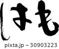 はも 魚 筆文字のイラスト 30903223