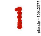 花 ベクター レターのイラスト 30912377