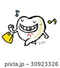 歯 30923326