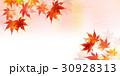紅葉 もみじ 秋のイラスト 30928313