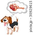 動物 犬 こいぬのイラスト 30929615