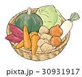 野菜 食材 農産物のイラスト 30931917