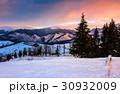 ウィンター ウインター 冬の写真 30932009