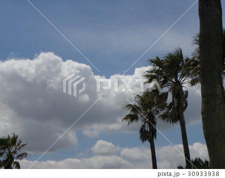 初夏の白い雲と青い空 30933938