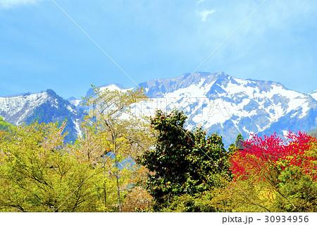 雪の谷川岳爼倉(マナイタグラ) 30934956