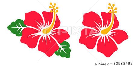 花イラストハイビスカスhibiscus06のイラスト素材 30938495 Pixta