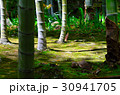京都の旅 30941705