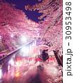 4月岐阜 大垣船町川湊 夜桜 ライトアップ 30953498