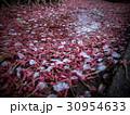 花ピンク盛り 30954633