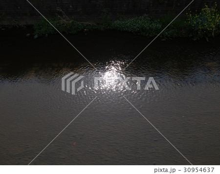 川面に映る日の光 30954637