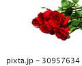 花 お花 フラワーの写真 30957634