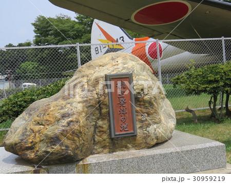 所沢航空記念公園 30959219