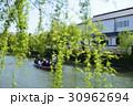 柳川 川下り 川の写真 30962694
