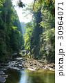 弘文洞跡 養老渓谷 渓谷の写真 30964071