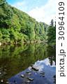 養老渓谷 川 反射の写真 30964109