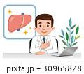 医師 肝臓 ベクターのイラスト 30965828