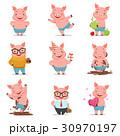 ぶた ブタ 豚のイラスト 30970197
