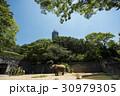 春の東山動植物園 30979305