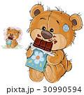 クマのぬいぐるみ テディベア テディーベアのイラスト 30990594