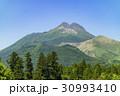 由布岳 春 新緑の写真 30993410