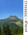由布岳 春 新緑の写真 30993412