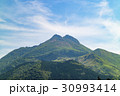 由布岳 春 新緑の写真 30993414