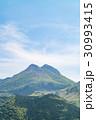 由布岳 春 新緑の写真 30993415