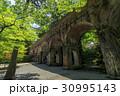 水路閣 新緑 水道橋の写真 30995143