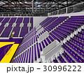 Beautiful modern handball arena with purple seats 30996222