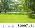 公園 芝生 広場の写真 30997141