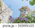 ライラックの花と札幌時計台 30999105