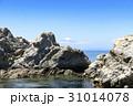 海岸 富士山 磯 31014078
