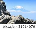 富士山 岩 31014079