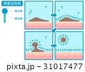 界面活性剤 仕組み 肌のイラスト 31017477