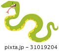 ヘビ 蛇 マンガのイラスト 31019204